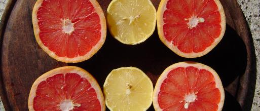 Pomelos y limones de la mejor naranja para ensalada templada de pomelo