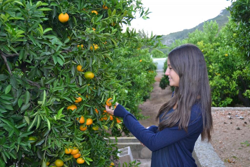Beneficios de las mandarinas para tu piel