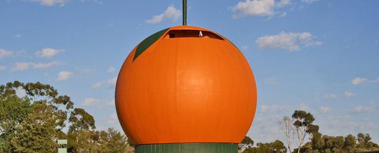 Curiosidades y origen de la mandarina