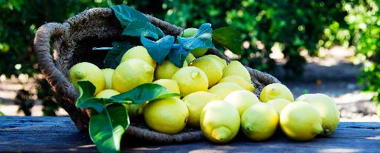 Remedios naturales con limón para combatir la gripe.