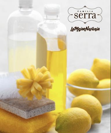 el-poder-del-limon-como-desinfectante